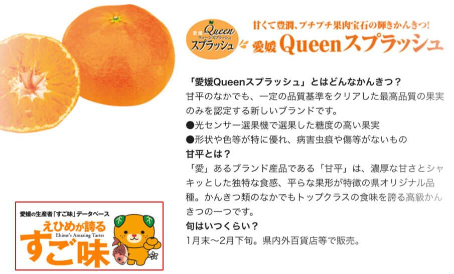 愛媛が誇るすご味 Queenスプラッシュの紹介画像